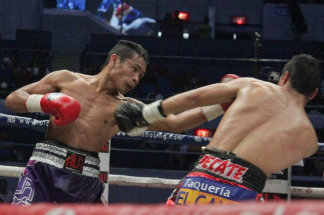 Donnie Nietes lands brutal combo after combo. PINOY PRIDE 30 D-Day was held at the SMART Araneta Coliseum last March 28, 2015. Photo by Jude Bautista