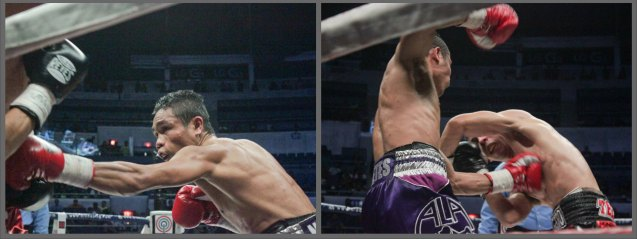 from left: Nietes' lands vicious body shot and (right) overhand right follows left hook. PINOY PRIDE 30 D-Day was held at the SMART Araneta Coliseum last March 28, 2015. Photo by Jude Bautista